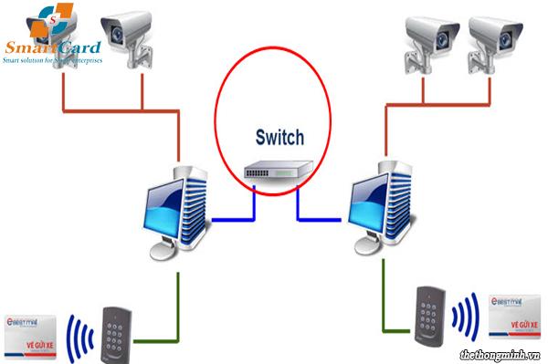 Hệ thống kết nối thông qua switch